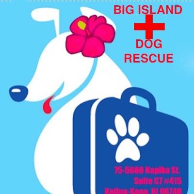 Big Island Hawaii Dog Rescue