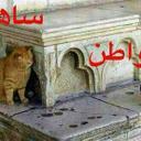 ali ahmad (@05082ali1) Twitter