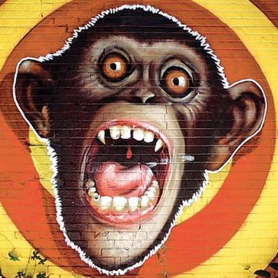 UH-OH MONKEY | Social Profile