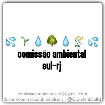 Comissao Ambiental Sul-RJ