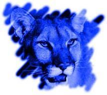 Aric Cougar