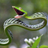 snakeress
