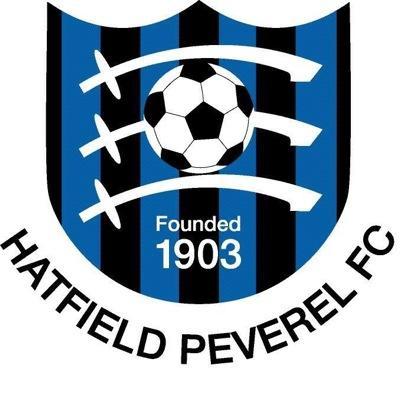 Image result for hatfield peverel fc