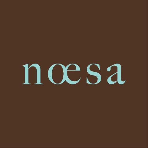 @_noesa_