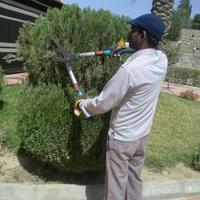 sk habib gardener