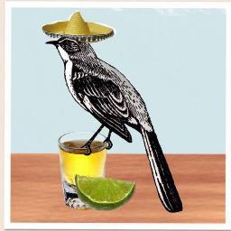 Tequila Mockingbird