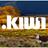 Dot Kiwi
