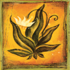 The four agreements thefouragreemts twitter the four agreements platinumwayz