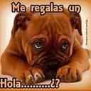 Jose Luis Mendieta (@1977Merino) Twitter