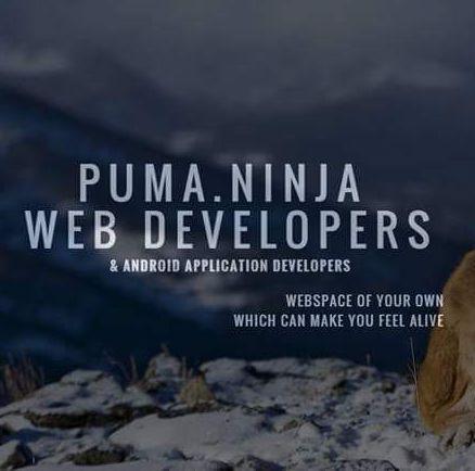 Haciendo Sermón Fértil  Puma .ninja (@ninja_puma) | Twitter