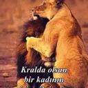 Saban Akmese (@13Akmese) Twitter