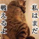 やす(´・ω・`) (@1964yasuyasu2) Twitter