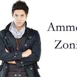 official ammarzoni