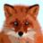 @akswampfox Profile picture