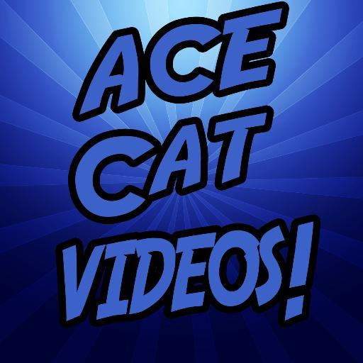 Acecad Acecat Flair - Acecad Acecat Flair
