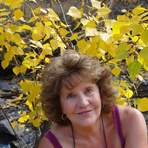Teresa D lundgren