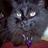 PsychicCAT's avatar