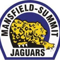 jaguar battalion