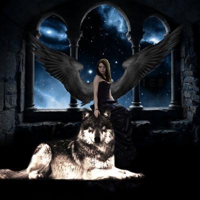 Starlight Wolf (@JackTandy3) | Twitter