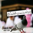 ام رهف  (@57970d383ef546b) Twitter