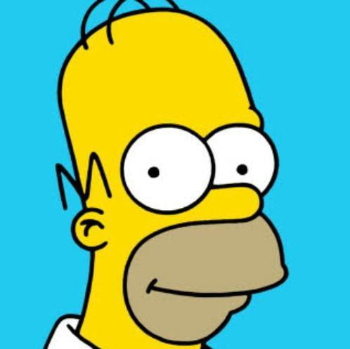 Homer Simpson Social Profile