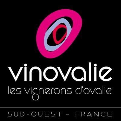 @vinovalie
