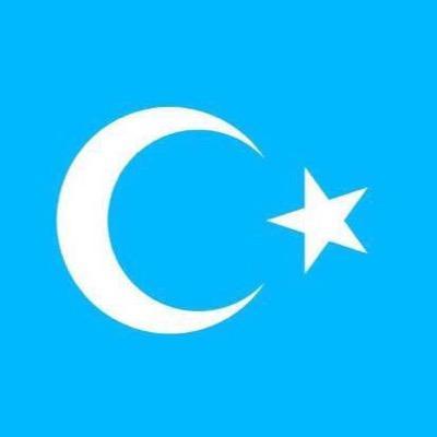 @mustafaglbahar