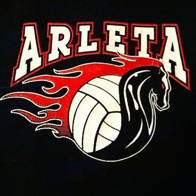 Arleta Volleyball