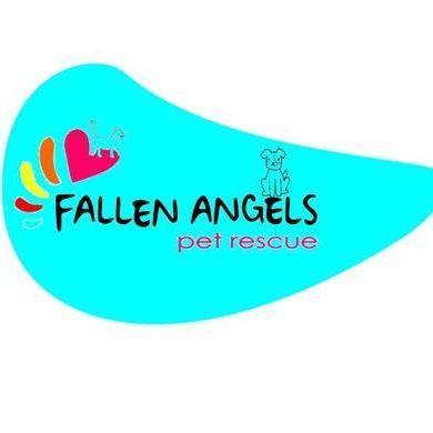 @fallenangelsza