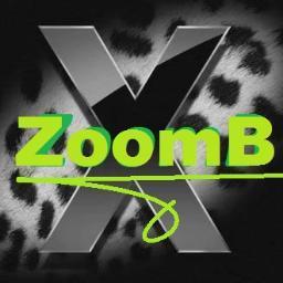 Zoomb