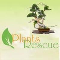 PlantsRescue