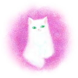 ギンガネコ على تويتر 不機嫌そうな猫とバラを描きました お断りしますが似合う気がして文字を入れてみました イラスト 猫イラスト Http T Co Uznrol9dys