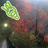 kekeyon3@ワサラー団 (@kekeyon3)