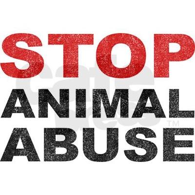 stop animal abuse Many people have different interpretations of what is considered animal abuse  identifying abuse or neglect may be harder than it first appears it is important.