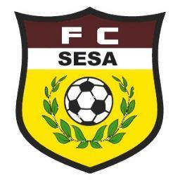 Sesa Soccer Long Island