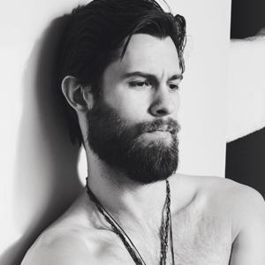 BeardModel