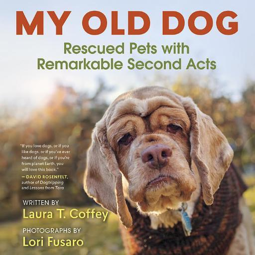 My Old Dog (@MyOldDogBook )
