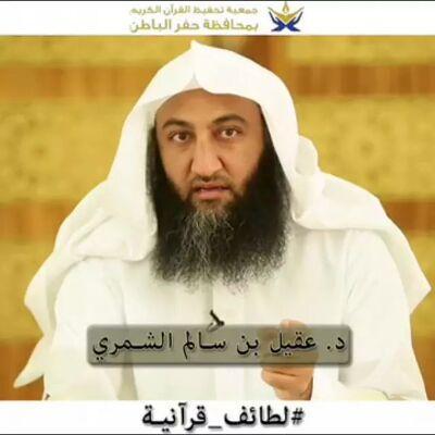 Image result for عقيل سالم الشمري ويكيبيديا