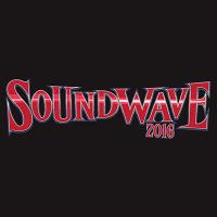 Soundwave Festival | Social Profile