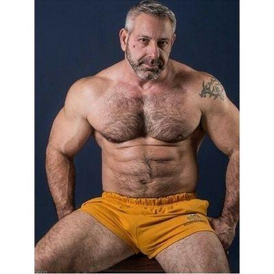 tournante gay gaybear profil
