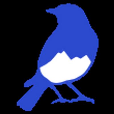 Bluebird Day Gear