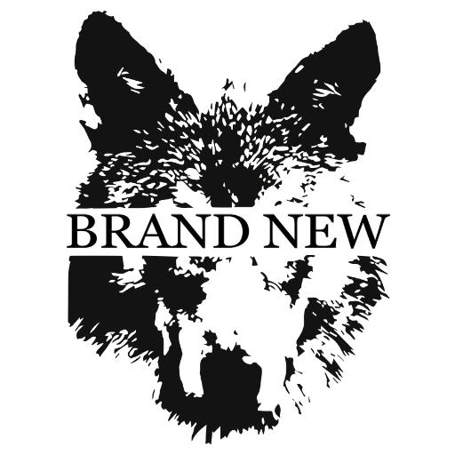 brand new fans brandnewrockfan twitter
