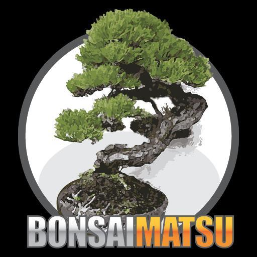 Scott Martin On Twitter Coprosma Repens Or Mirror Bush Ready For The Bonsai Society Of Victoria Show This Weekend Bonsaimatsu Coprosmarepens Bonsai Mirrorbush Bonsaisocietyofvictoria Bonsaishow Showready Watch Instavideo Https T Co