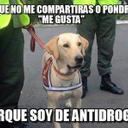 Aurelio Flores Quisp - @aurelioflores46 - Twitter