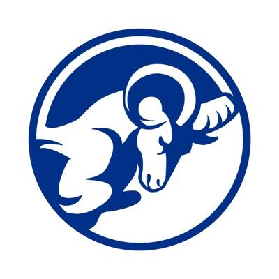 Image result for Ladue Rams