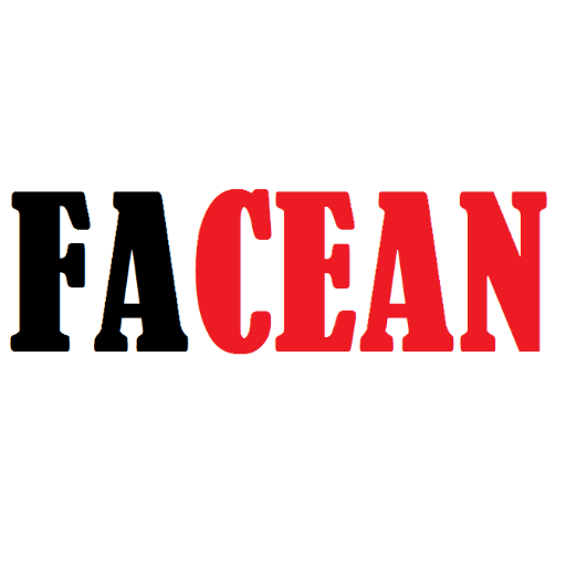 Facean Social Profile