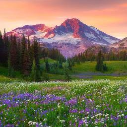 colorful landscapes colorfulscapes twitter