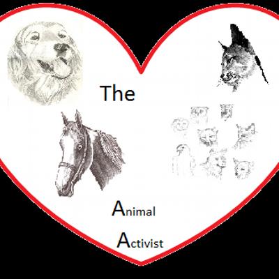 Animal Activist (@AnimalActivist1) | Twitter