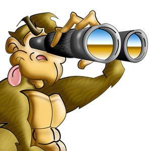 Voyeur monkey