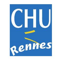 """Résultat de recherche d'images pour """"chu renne"""""""